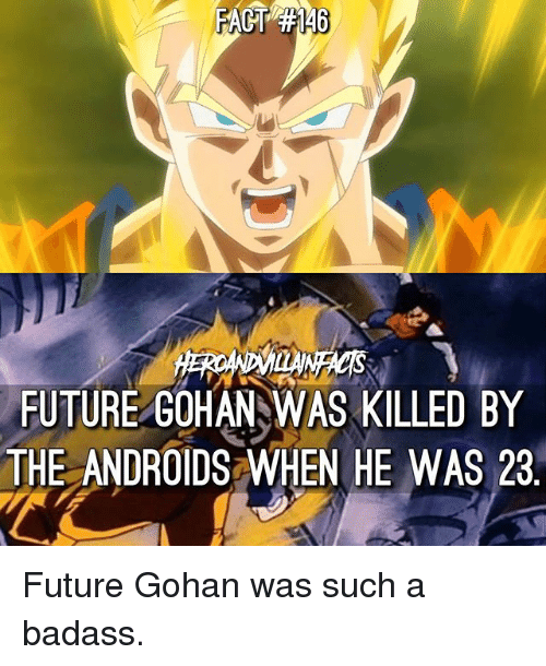 Badasses: FUTURE GOHAN WAS KILLED BY  THE ANDROIDS WHEN HE WAS 23 Future Gohan was such a badass.