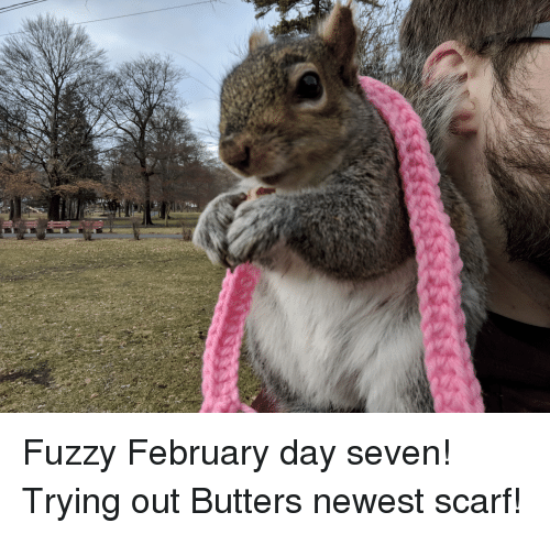 fuzzy: Fuzzy February day seven! Trying out Butters newest scarf!