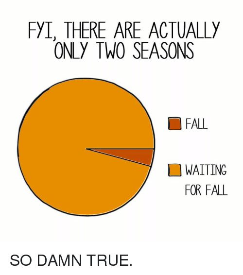 Fall, Memes, and True: FYI, THERE ARE ACTUALLY  ONLY TW0 SEASONS  FALL  WAITING  FOR FALL SO DAMN TRUE.