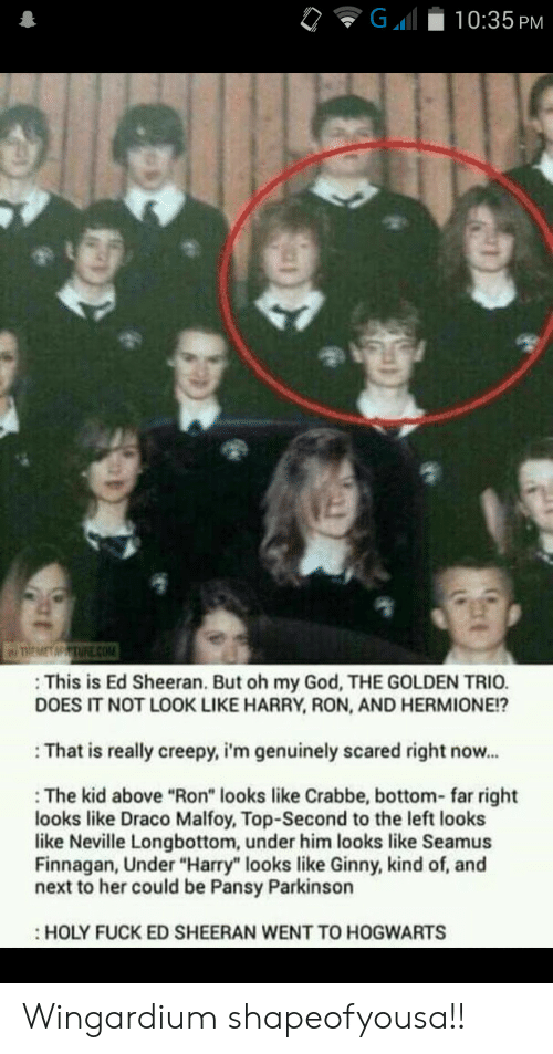 """hogwarts: G  10:35 PM  TREMET MPTURE cOM  This is Ed Sheeran. But oh my God, THE GOLDEN TRIO.  DOES IT NOT LOOK LIKE HARRY, RON, AND HERMIONE!?  That is really creepy, i'm genuinely scared right now...  The kid above """"Ron"""" looks like Crabbe, bottom- far right  looks like Draco Malfoy, Top-Second to the left looks  like Neville Longbottom, under him looks like Seamus  Finnagan, Under """"Harry"""" looks like Ginny, kind of, and  next to her could be Pansy Parkinson  HOLY FUCK ED SHEERAN WENT TO HOGWARTS Wingardium shapeofyousa!!"""