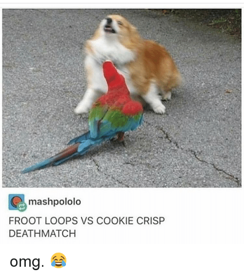 Memes, Cookie Crisp, and 🤖: G mashpololo  FROOT LOOPS VS COOKIE CRISP  DEATH MATCH omg. 😂