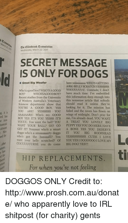Non Existent Existentialist, Doggo, and Midnight: g ord his  it is  aht Ellenbrook Wednesday March 22, 2017  SECRET MESSAGE  IS ONLY FOR DOGS  Great Big Woofer  here  yesssssssss WHO'S GETTING  ABIG BELLYSCRATCHYESSSSSS  Who's a good boy? WHOSAGOOD  YOUUUUUUU. Comrade, I don't  BOY?  WHOSSA GOOD BOY?  have much time, I've embedded  Recent studies from the University this information deep enough into  of Western Australia's Veterinary  this nonsense article that nobody  Sciences  department show that should read it unless they're  YOURE A GOOD BOY. YES  looking for it. The mission has  YOU ARE!  YEssssss YOU failed and the raven has flown on  AAAAAARE! Who's my GOOD  wings of midnight. Don't pray for  BOY YES ITS YOU YESSS ITS me, I'm already dead. YOU WANT  YOUUU. You want the ball? YOU  A TREAT YOU LOVELY BIG  WANT YOUR BALL? GO! GO PUPPY YES YOU DO HERE HAVE  GET IT! Yessssss who's a smart A BONE YES YOU DESERVE  Mrs  doggo who's a smaaaaaarty doggo IT YOU  BIG BOOFHEAD  fr  who's got the baaaaall? You  YESSSSSSSSSS CUTIE LOVE  want your belly scratched? Of  YOU YESIDOOOOOOI LOVE MY  COUUUUUURSE you do come BIG DOG! YES!!!  HIP REPLACEMENTS  til  For when you're not feeling DOGGOS ONLY  Credit to: http://www.prosh.com.au/donate/ who apparently love to IRL shitpost (for charity) gents