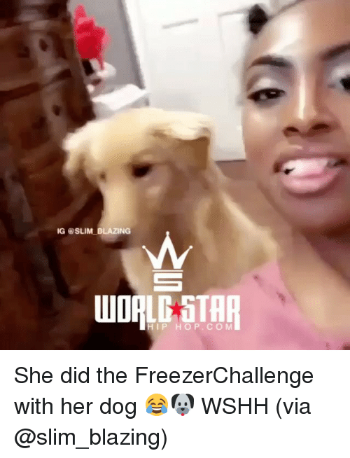 Memes, Wshh, and 🤖: G@SLIM BLAZING  STA  IP HOP.CO M She did the FreezerChallenge with her dog 😂🐶 WSHH (via @slim_blazing)