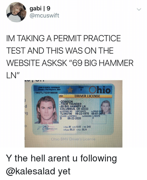 "Memes, Test, and Thor: gabi | 9  @mcuswift  IM TAKING A PERMIT PRACTICE  TEST AND THIS WAS ON THE  WEBSITE ASKSK ""69 BIG HAMMER  LN""  hio  DRIVER LICENSE  ODINSON  THOR THUNDER  COLUMBUS, OH 43333  TL545796 06-22-1970 08-01-2015  D06-22-2020  69 BiG HAMMER LN Y the hell arent u following @kalesalad yet"