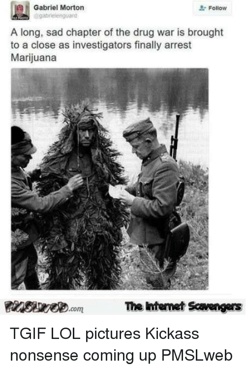 Lol Pictures: Gabriel Morton  brelenguard  2- Follow  A long, sad chapter of the drug war is brought  to a close as investigators finally arrest  Marijuana  PsweomThe htemet Scavengers <p>TGIF LOL pictures  Kickass nonsense coming up  PMSLweb </p>