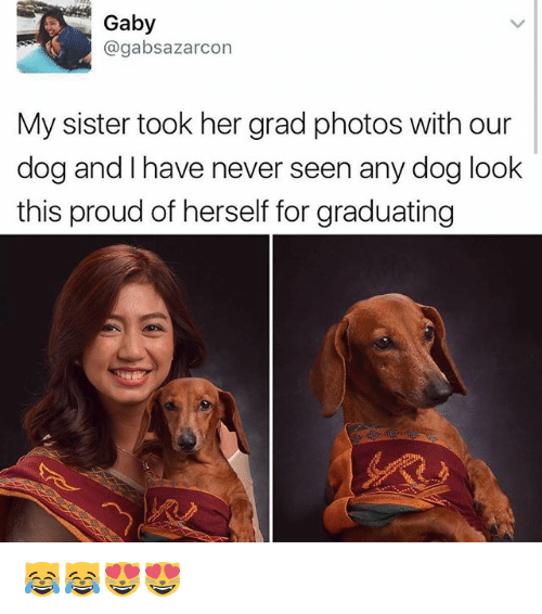 Memes, Proud, and Never: Gaby  agabsazarcon  My sister took her grad photos with our  dog and l have never seen any dog look  this proud of herself for graduating 😹😹😻😻