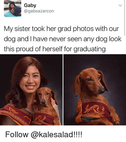 Memes, Proud, and Never: Gaby  @gabsazarcon  My sister took her grad photos with our  dog and have never seen any dog look  this proud of herself for graduating Follow @kalesalad!!!!