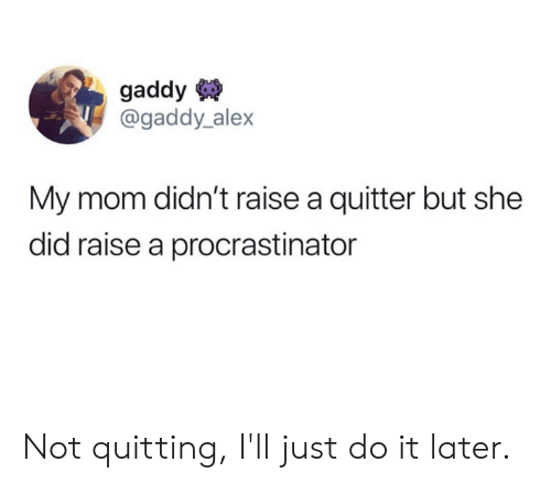 Quitting: gaddy  @gaddy_alex  My mom didn't raise a quitter but she  did raise a procrastinator Not quitting, I'll just do it later.