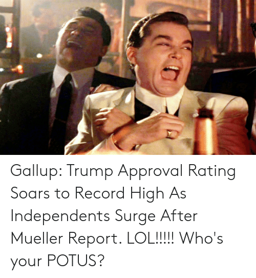 Trump Approval Rating: Gallup: Trump Approval Rating Soars to Record High As Independents Surge After Mueller Report. LOL!!!!! Who's your POTUS?