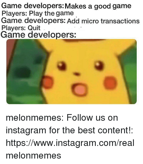good game: Game developers: Makes a good game  Players: Play the game  Game developers: Add micro transactions  Players: Quit  Game developers: melonmemes:  Follow us on instagram for the best content!: https://www.instagram.com/realmelonmemes