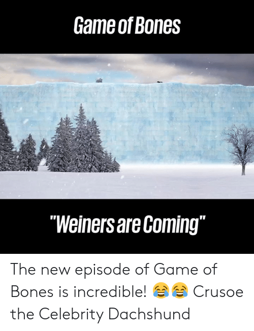 "new episode: Game of Bones  ""Weiners are Coming"" The new episode of Game of Bones is incredible! 😂😂  Crusoe the Celebrity Dachshund"