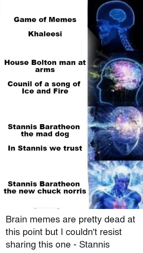 Memes, A Song of Ice and Fire, and A Song: Game of Memes  Khaleesi  House Bolton man at  arms  Counil of a song of  Ice and Fire  Stannis Baratheon  the mad dog  In Stannis we trust  Stannis Baratheon  the new chuck norris Brain memes are pretty dead at this point but I couldn't resist sharing this one  - Stannis