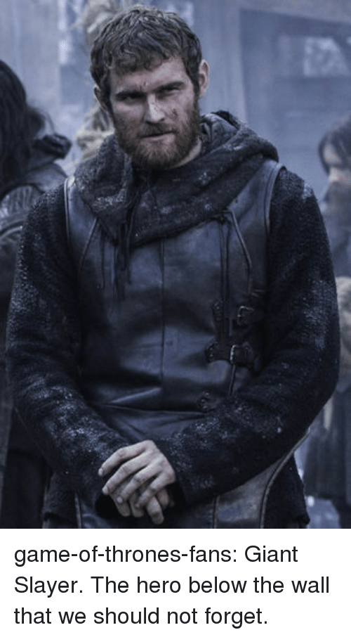 Slayer: game-of-thrones-fans:  Giant Slayer. The hero below the wall that we should not forget.