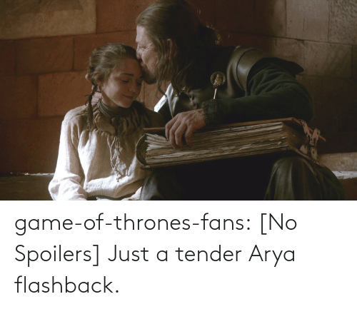 Game of Thrones: game-of-thrones-fans:  [No Spoilers] Just a tender Arya flashback.