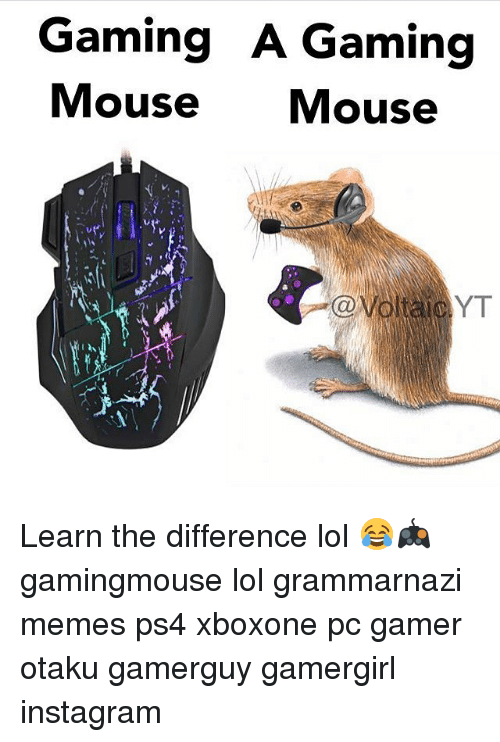 mouses: Gaming A Gaming  Mouse Mouse  YT Learn the difference lol 😂🎮 gamingmouse lol grammarnazi memes ps4 xboxone pc gamer otaku gamerguy gamergirl instagram