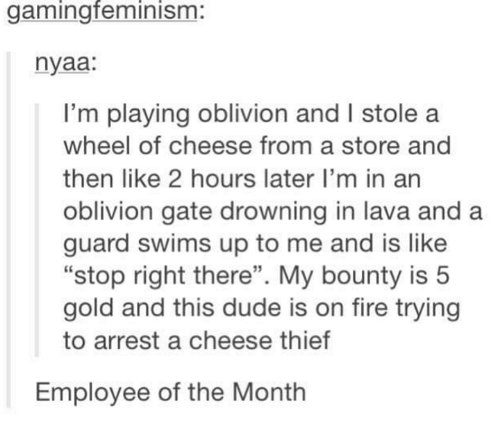 "Dude, Fire, and Humans of Tumblr: gamingfeminism:  nyaa:  I'm playing oblivion and I stole a  wheel of cheese from a store and  then like 2 hours later I'm in an  oblivion gate drowning in lava and a  guard swims up to me and is like  ""stop right there"". My bounty is 5  gold and this dude is on fire trying  to arrest a cheese thief  Employee of the Month"