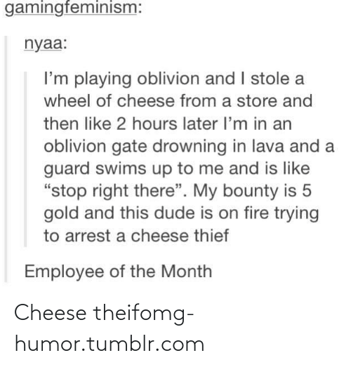 "Theif: gamingfeminism:  nyaa:  I'm playing oblivion and I stole a  wheel of cheese from a store and  then like 2 hours later l'm in an  oblivion gate drowning in lava and a  guard swims up to me and is like  ""stop right there"". My bounty is 5  gold and this dude is on fire trying  to arrest a cheese thief  Employee of the Month Cheese theifomg-humor.tumblr.com"