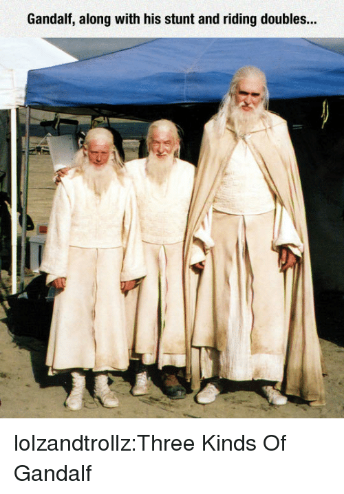 Gandalf: Gandalf, along with his stunt and riding doubles... lolzandtrollz:Three Kinds Of Gandalf