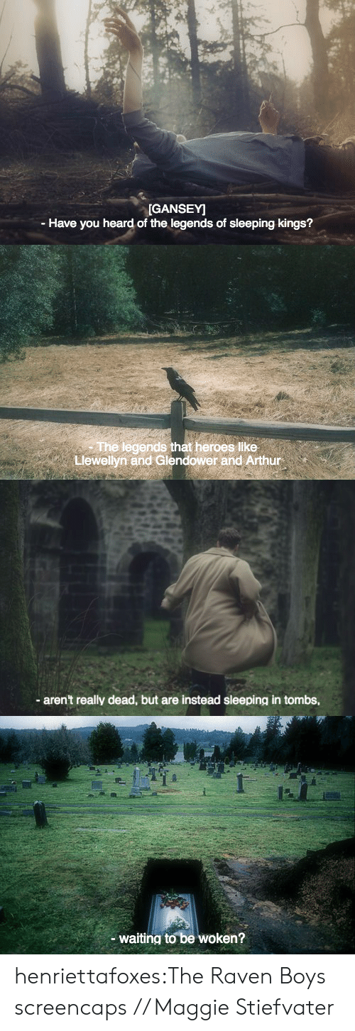 the raven: GANSEY]  - Have you heard of the legends of sleeping kings?   The legendsat heroes lIke  Llewellyn and Glendower and Arthur  s like   aren't really dead, but are instead sleeping in tombs,   waiting to be woken? henriettafoxes:The Raven Boys screencaps // Maggie Stiefvater