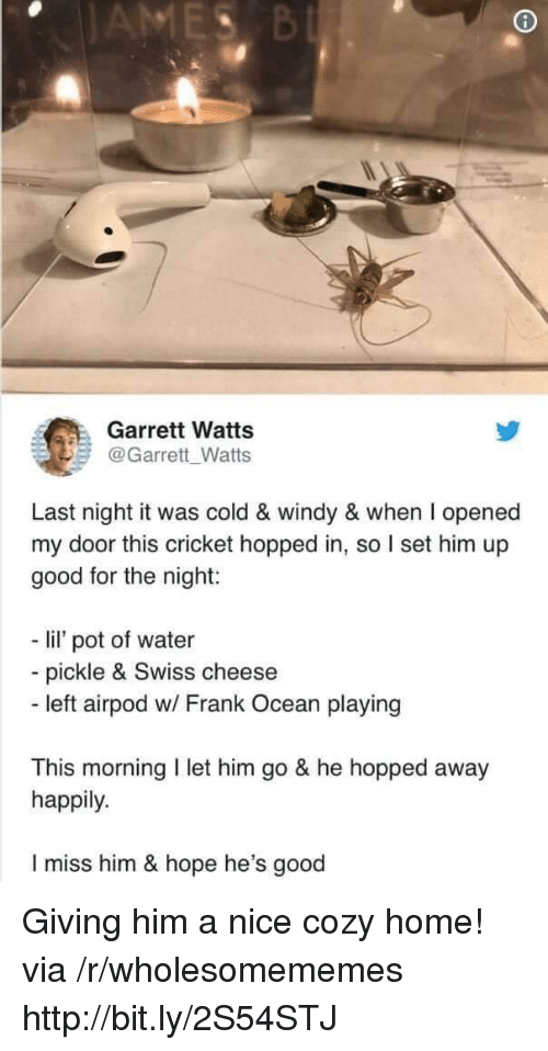 Frank Ocean: Garrett Watts  @Garrett Watts  Last night it was cold & windy & when I opened  my door this cricket hopped in, so I set him up  good for the night:  - li pot of water  - pickle & Swiss cheese  - left airpod w/ Frank Ocean playing  This morning I let him go & he hopped away  happily.  I miss him & hope he's good Giving him a nice cozy home! via /r/wholesomememes http://bit.ly/2S54STJ