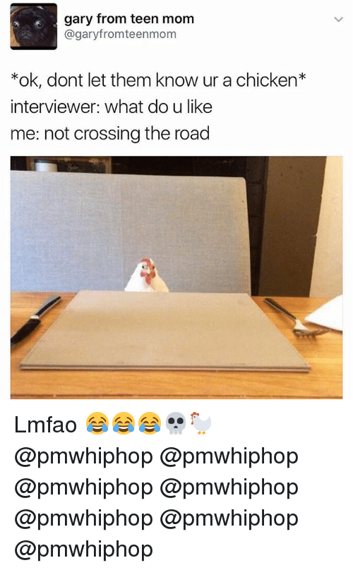 Memes, Chicken, and Teen Mom: gary from teen mom  @gary fromteenmom  ok, dont let them know ur a chicken  interviewer: What doulike  me: not crossing the road Lmfao 😂😂😂💀🐓 @pmwhiphop @pmwhiphop @pmwhiphop @pmwhiphop @pmwhiphop @pmwhiphop @pmwhiphop