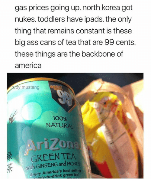 Ginseng: gas prices going up.north korea got  nukes. toddlers have ipads. the only  thing that remains constant is these  big ass cans of tea that are 99 cents.  these things are the backbone of  america  dy mustang  100%  NATURAL  GREEN TEA  With GINSENG and HONEY  Enjoy America's best selling  adv-to-drink green teal
