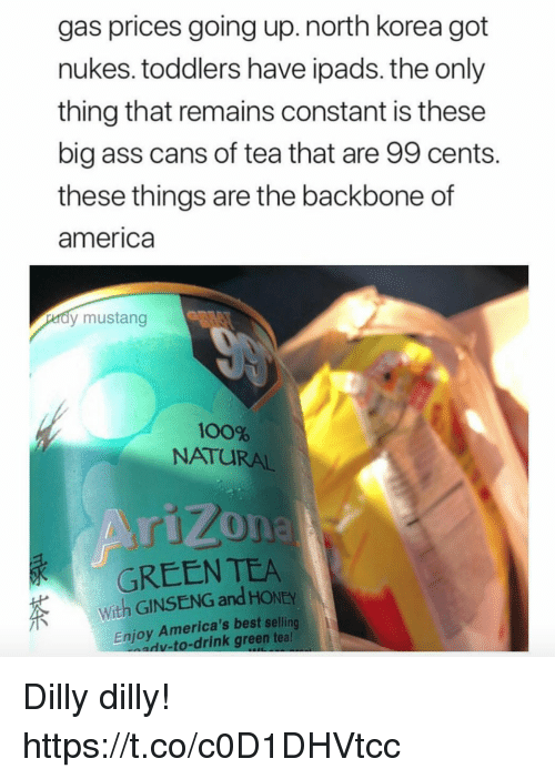 Ginseng: gas prices going up.north korea got  nukes. toddlers have ipads. the only  thing that remains constant is these  big ass cans of tea that are 99 cents.  these things are the backbone of  america  dy mustang  100%  NATURAL  GREEN TEA  With GINSENG and HONEY  Enjoy America's best selling  v-to-drink green tea Dilly dilly! https://t.co/c0D1DHVtcc