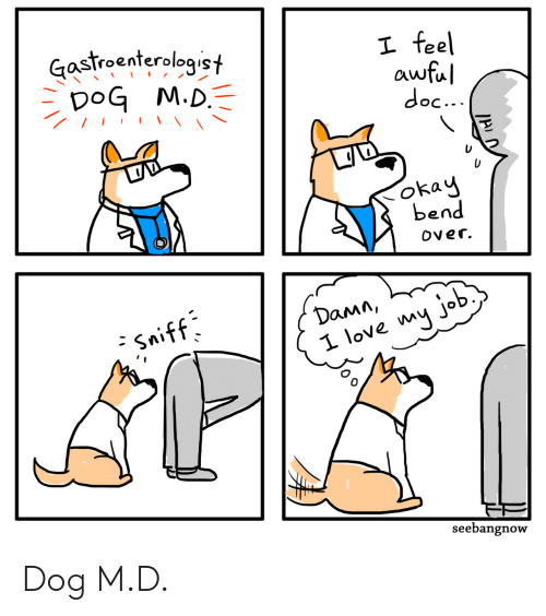 Bend Over: Gastroenterologist  DoG M.D.  I feel  awful  doc...  okay  bend  Over.  Damn,  - Sniff  I love my job  seebangnow Dog M.D.