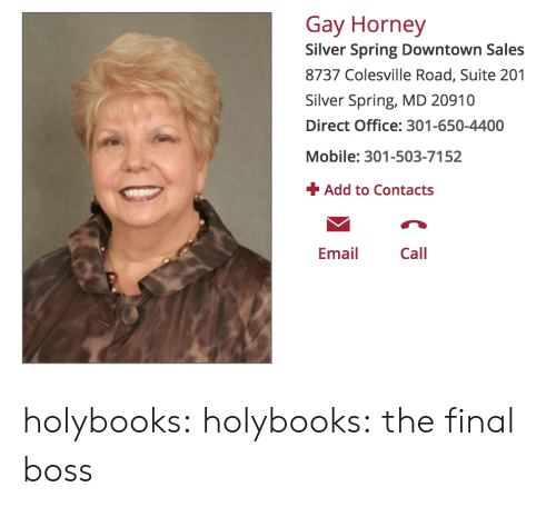 suite: Gay Horney  Silver Spring Downtown Sales  8737 Colesville Road, Suite 201  Silver Spring, MD 20910  Direct Office: 301-650-4400  Mobile: 301-503-7152  Add to Contacts  Emai Call holybooks:  holybooks:  the final boss