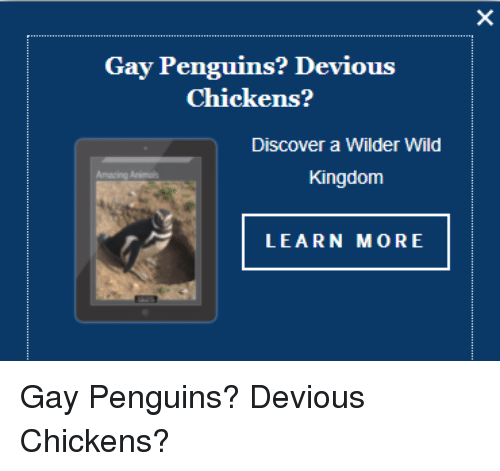 Discover more Business Gay