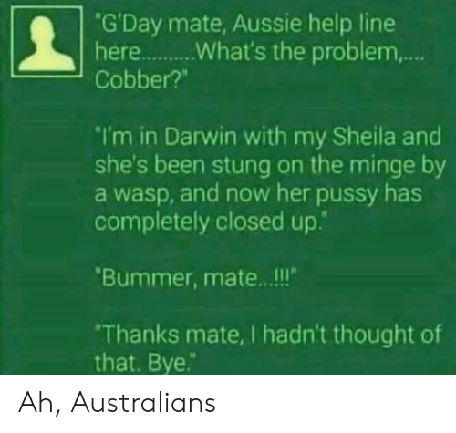 """wasp: """"G'Day mate, Aussie help line  Cobber?""""  I'm in Darwin with my Sheila and  she's been stung on the minge by  a wasp, and now her pussy has  completely closed up.""""  Bummer, mate.. .!!  Thanks mate, I hadn't thought of  that. Bye. Ah, Australians"""