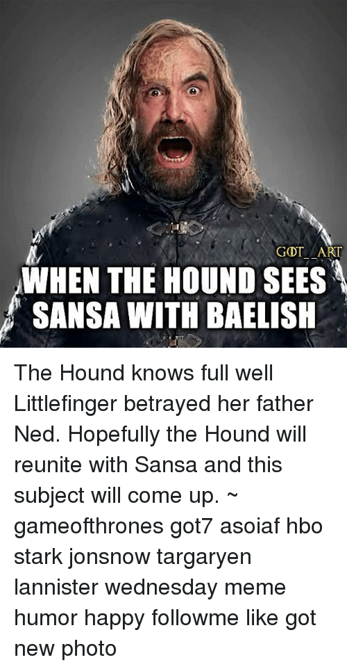 gdt art when the hound sees sansa with baelish the 19011564 🔥 25 best memes about the hound, meme, and memes the hound