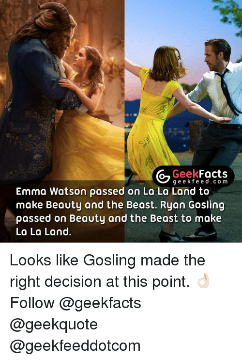 Emma Watson, Memes, and Ryan Gosling: Geek  Facts  g e e k f Emma Watson passed on La La Land to  make Beauty and the Beast. Ryan Gosling  passed on Beauty and the Beast to make  La La Land Looks like Gosling made the right decision at this point. 👌🏻 Follow @geekfacts @geekquote @geekfeeddotcom