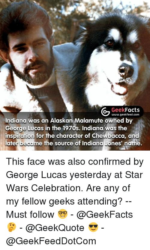 Chewbacca, Facts, and Memes: Geek  Facts  www.geekfeed.com  Indiana was an Alaskan Malamute owned by  George Lucas in the 1970s. Indiana was the  inspiration for the character of Chewbacca, and  later be  e the source of Indiana Jones' name. This face was also confirmed by George Lucas yesterday at Star Wars Celebration. Are any of my fellow geeks attending? -- Must follow 🤓 - @GeekFacts 🤔 - @GeekQuote 😎 - @GeekFeedDotCom