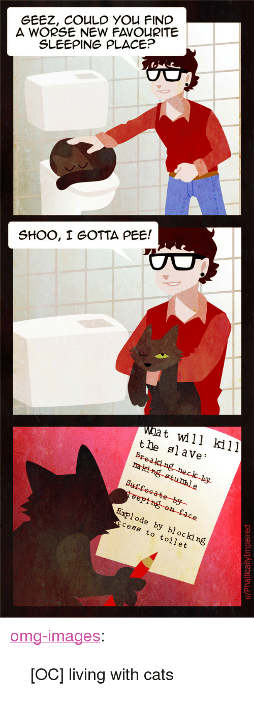 "Cats, Omg, and Tumblr: GEEZ, COULD YOU FINC  A WORSE NEW FAVOURITE  SLEEPING PLACE?  SHOO, I GOTTA PEE!  wat will kill  tle slave'  Explode by blocki ng  code  cess to toilet <p><a href=""https://omg-images.tumblr.com/post/169053897682/oc-living-with-cats"" class=""tumblr_blog"">omg-images</a>:</p>  <blockquote><p>[OC] living with cats</p></blockquote>"