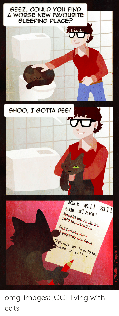 i gotta pee: GEEZ, COULD YOU FINC  A WORSE NEW FAVOURITE  SLEEPING PLACE?  SHOO, I GOTTA PEE!  wat will kill  tle slave'  Explode by blocki ng  code  cess to toilet omg-images:[OC] living with cats