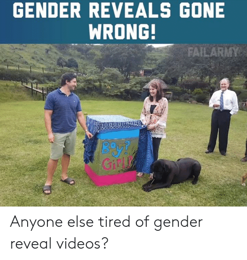 Gone Wrong: GENDER REVEALS GONE  WRONG!  Giny Anyone else tired of gender reveal videos?