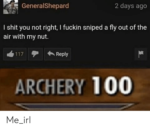 archery: GeneralShepard  2 days ago  I shit you not right, I fuckin sniped a fly out of the  air with my nut.  Reply  117  ARCHERY 100 Me_irl