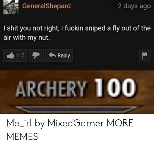 archery: GeneralShepard  2 days ago  I shit you not right, I fuckin sniped a fly out of the  air with my nut.  Reply  117  ARCHERY 100 Me_irl by MixedGamer MORE MEMES