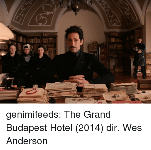 Wes: genimifeeds: The Grand Budapest Hotel (2014) dir. Wes Anderson