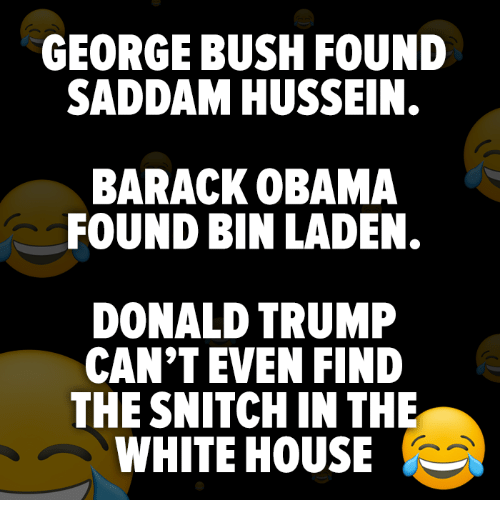 Donald Trump, Obama, and Snitch: GEORGE BUSH FOUND  SADDAM HUSSEIN.  BARACK OBAMA  FOUND BIN LADEN.  DONALD TRUMP  CAN'T EVEN FIND  THE SNITCH IN THE  WHITE HOUSE