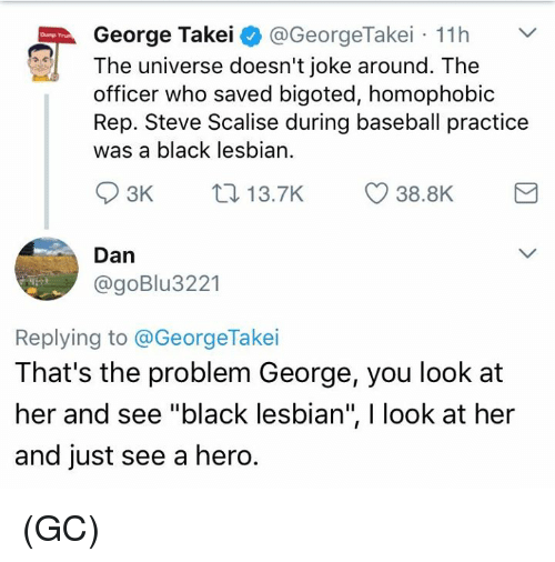 "Baseball, Memes, and Black: George Takei  @GeorgeTakei 11h  The universe doesn't joke around. The  officer who saved bigoted, homophobic  Rep. Steve Scalise during baseball practice  was a black lesbian.  S 3K  38.8K  13.7K  Dan  @goBlu 3221  Replying to @George Takei  That's the problem George, you look at  her and see ""black lesbian"", l look at her  and just see a hero. (GC)"