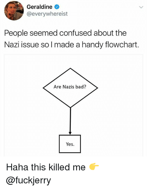 Fuckjerry: Geraldine  @everywhereist  People seemed confused about the  Nazi issue so I made a handy flowchart.  Are Nazis bad?  Yes. Haha this killed me 👉 @fuckjerry