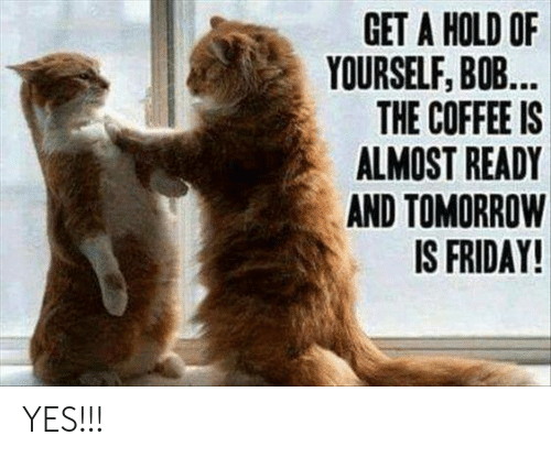 Tomorrow Is Friday: GET A HOLD OF  YOURSELF, B0B  THE COFFEE IS  ALMOST READY  AND TOMORROW  IS FRIDAY! YES!!!