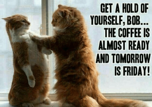 Tomorrow Is Friday: GET A HOLD OF  YOURSELF, BO...  THE COFFEE IS  ALMOST READY  AND TOMORROW  IS FRIDAY!
