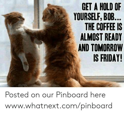 Tomorrow Is Friday: GET A HOLD OF  YOURSELF, BOB...  THE COFFEE IS  ALMOST READY  AND TOMORROW  IS FRIDAY! Posted on our Pinboard here www.whatnext.com/pinboard