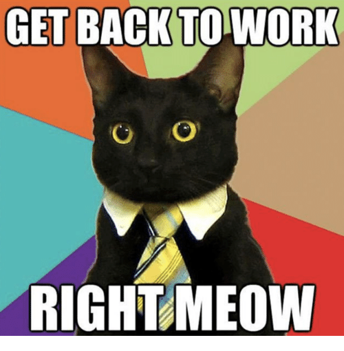 Work, Back, and Working: GET BACK TO WORK  RIGHT MEOW