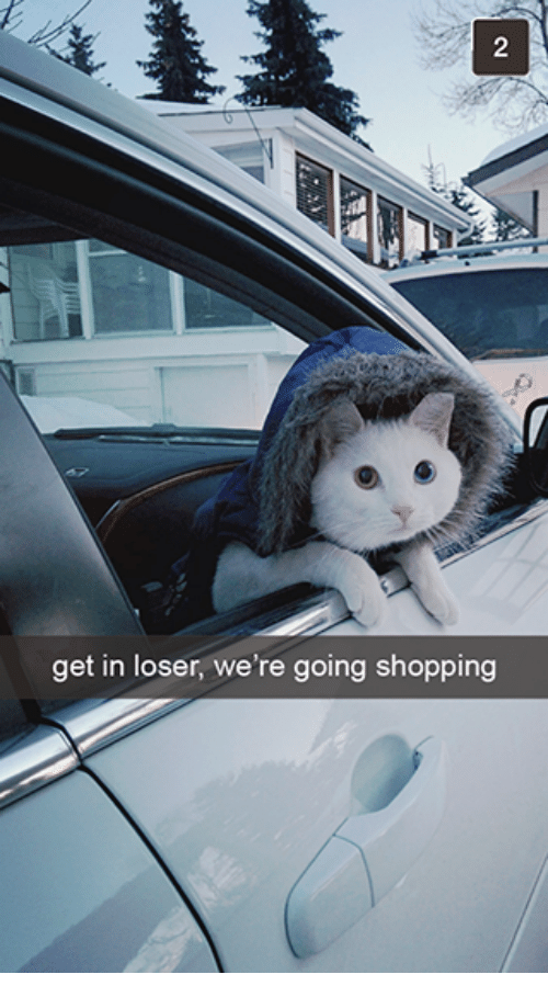 get in loser were going shopping: get in loser, we're going shopping