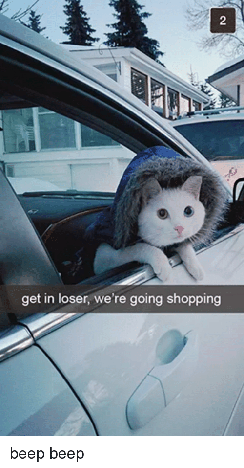 Get In Losers: get in loser, we're going shopping beep beep