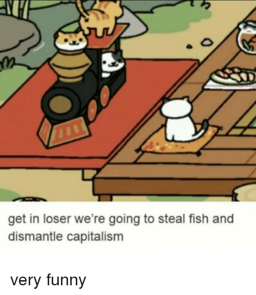 Get In Loser: get in loser we're going to steal fish and  dismantle capitalisnm very funny